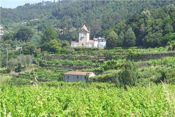 Quinta de Agrellos