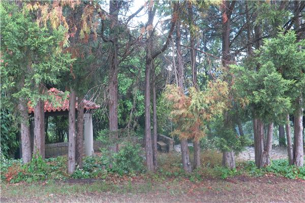 Casa de Vilacetinho - 2115