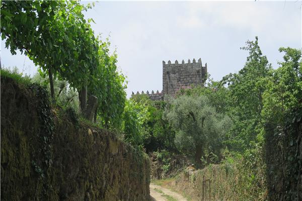 Quinta de Corutelo - 2315