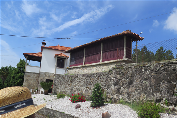Quinta da Calca - 2338